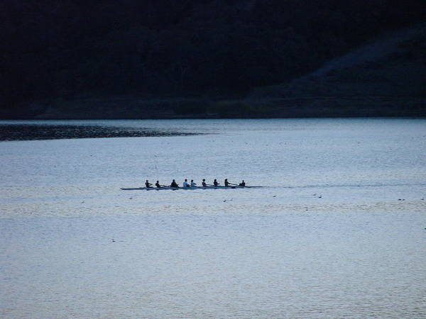 Lake Art Print featuring the photograph Evening Row by Liz Vernand