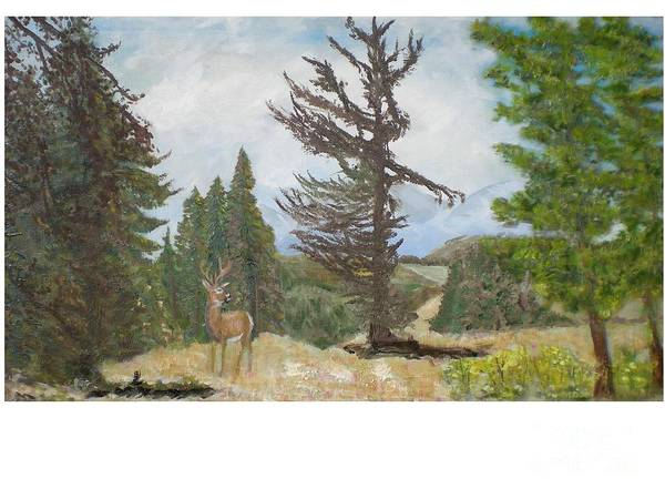 Deer Art Print featuring the painting Fairplay by Hal Newhouser