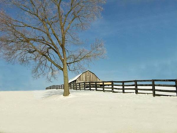 Weather Art Print featuring the photograph Fence Line by Martie DAndrea