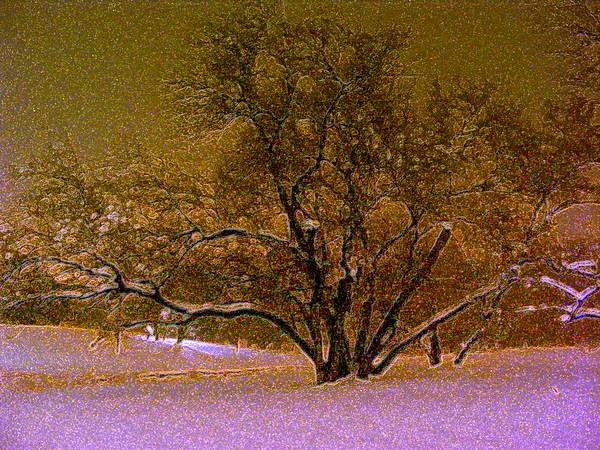 First Snowfall Art Print featuring the photograph First Snowfall by Sherwanda Irvin