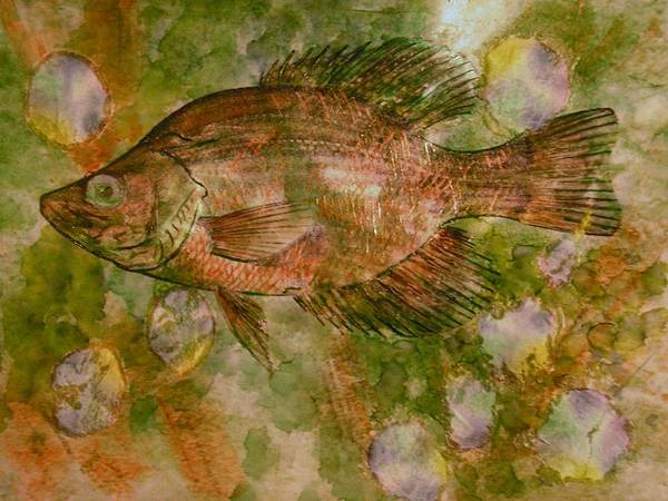 Fish Art Print featuring the painting Fish by John Vandebrooke
