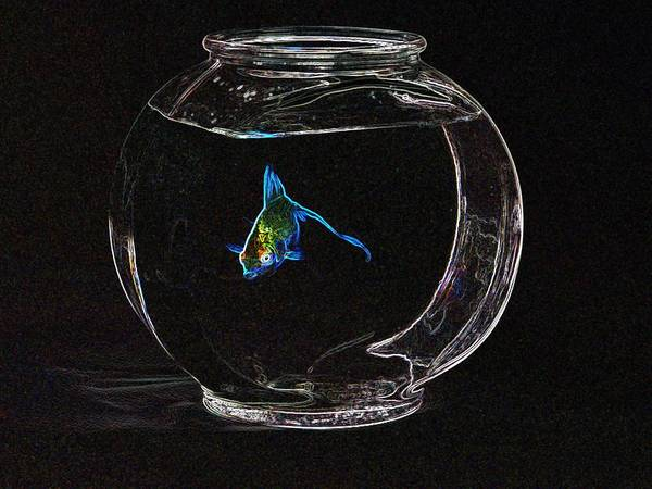 Fish Print featuring the photograph Fishbowl by Tim Allen