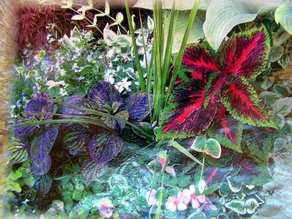 Flower Box Art Print featuring the mixed media Flower Box by John Vandebrooke