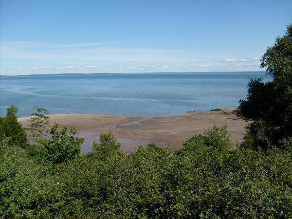 Digital Art Print featuring the photograph Fundy View by Melissa Parks