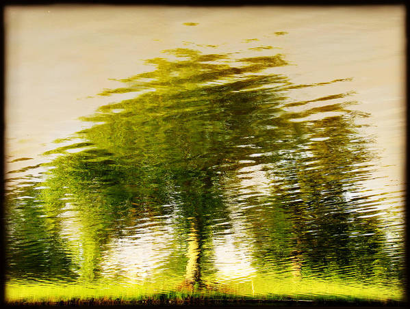 Abstract Art Print featuring the photograph Gentle Sun by Dana DiPasquale
