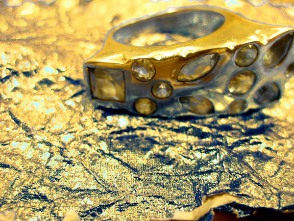 Photography Art Print featuring the photograph Gold On Gold by Anna Thomas