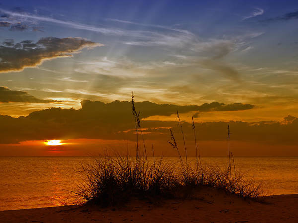 United Staates Art Print featuring the photograph Gorgeous Sunset by Melanie Viola