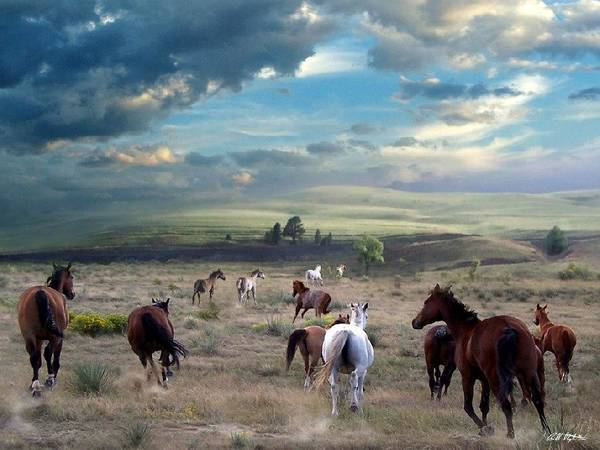 Horses Art Print featuring the mixed media Greener Pastures by Bill Stephens