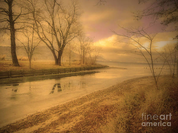 Lake Art Print featuring the photograph Half Reflections by Tara Turner