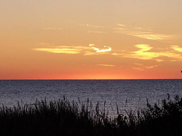 Sunset Art Print featuring the photograph Heart Sunset by Michelle Miron-Rebbe
