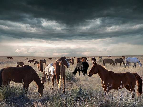 Horses Art Print featuring the digital art Horses Forever by Bill Stephens