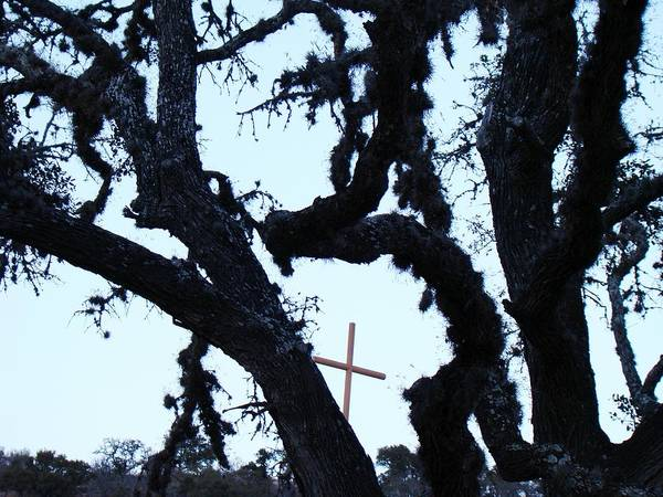 Cross Art Print featuring the photograph Hwy 87 Cross Two by Ana Villaronga