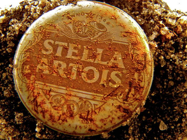 Beer Art Print featuring the photograph In The Dirt by Barbara Palmer