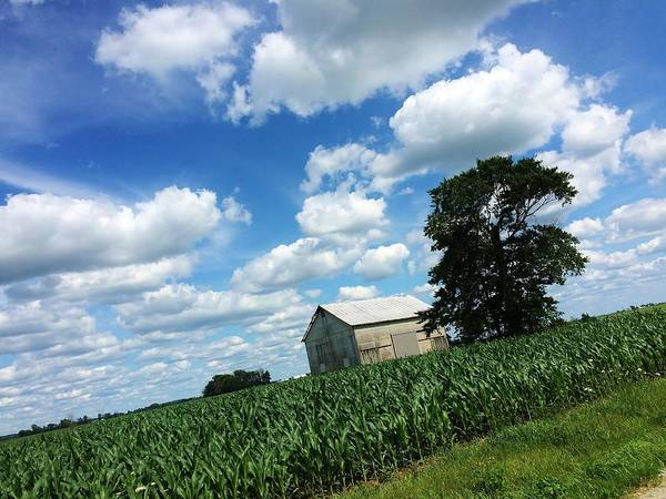 Red Art Print featuring the photograph Indiana Farm Scene by Rancher's Eye Photography
