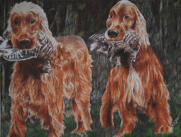 Dogs Art Print featuring the drawing Irish Setters by Darcie Duranceau