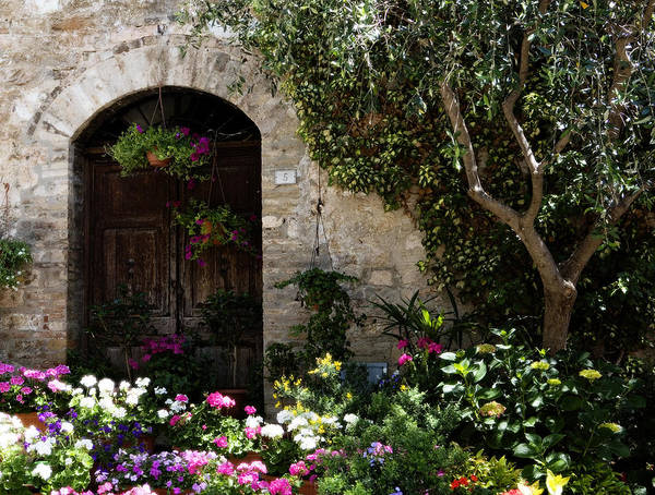 Flower Art Print featuring the photograph Italian Front Door Adorned With Flowers by Marilyn Hunt