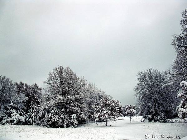 Snow Art Print featuring the photograph January Snow V by Brittini Rinehart