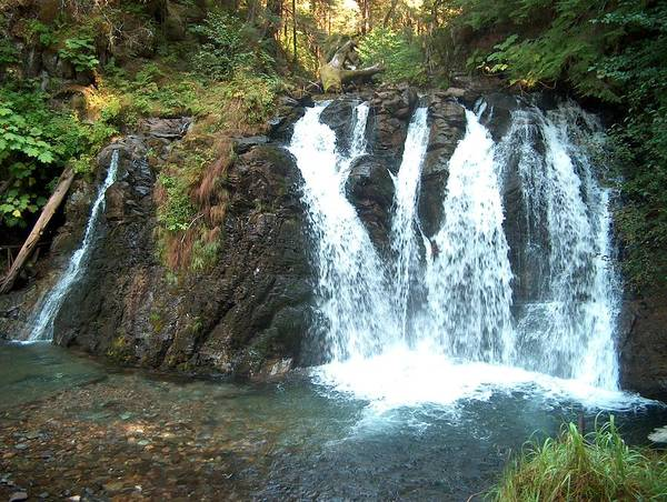 Waterfall Art Print featuring the photograph Juneau Waterfall by Janet Hall