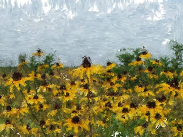 Field Black Yellow Flowers Green Painting Floral Daisies Garden Oil Eyed Impressionism Monet Art Print featuring the painting Krystallyn's Susans by Eddie Durrett