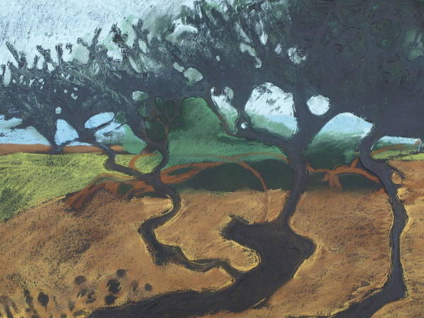 Contemporary Tree Landscape Art Print featuring the drawing La Jolla I by Leah Tomaino