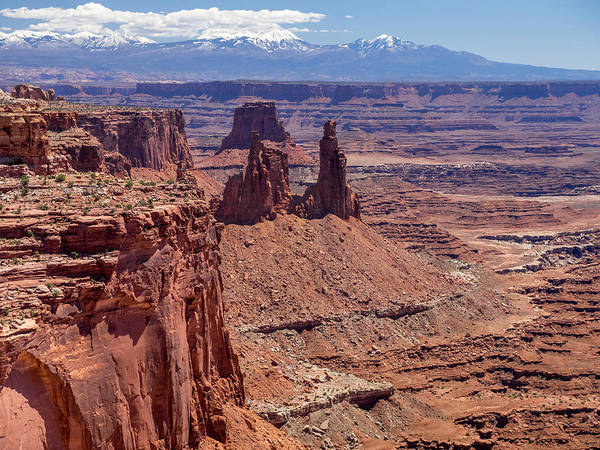 Canyonlands National Park Art Print featuring the photograph La Sal And The Canyon by Prashant Thumma