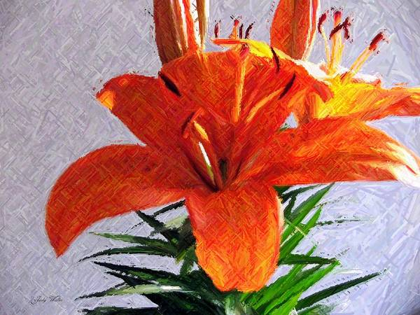 Lily Art Print featuring the photograph Lily In Color Pencil by Judy Waller