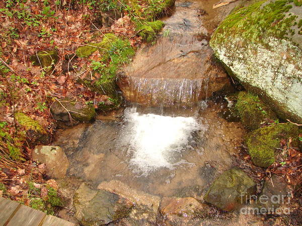 Water Falls Art Print featuring the photograph Little Falls by Penny Neimiller
