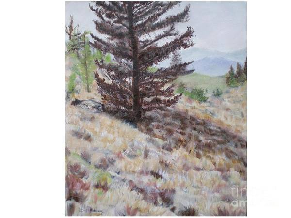 Bear Tree Art Print featuring the painting Lone Mountain Tree by Hal Newhouser