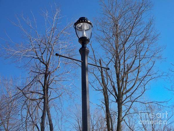 Lamp Post Print featuring the photograph Lonely Lamp Post by Deborah MacQuarrie-Haig