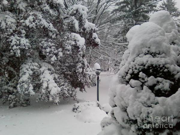First Snow Art Print featuring the photograph Looking Out My Front Door by Carol Wisniewski