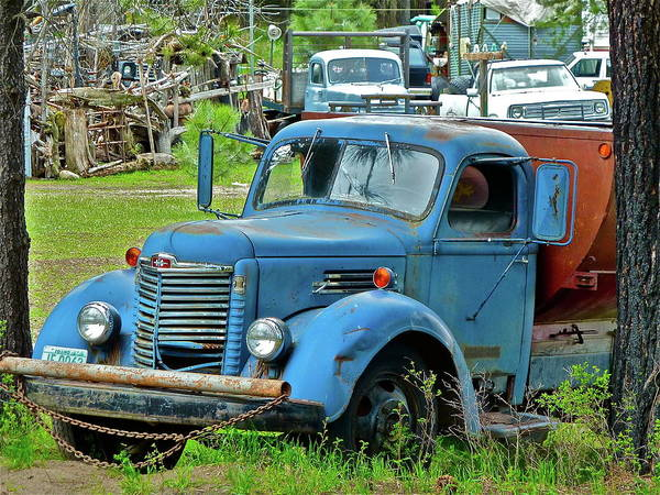 Truck Art Print featuring the photograph Lost Pride by Diana Hatcher
