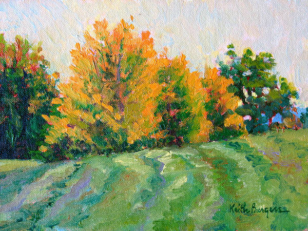 Impressionism Art Print featuring the painting Maple Grove by Keith Burgess