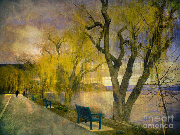 Lake Art Print featuring the photograph March 14 2010 by Tara Turner