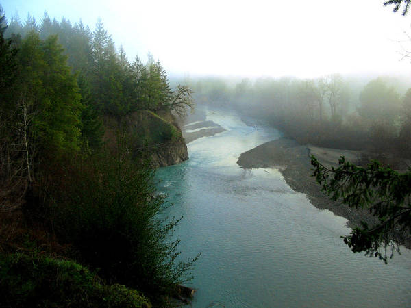 River Art Print featuring the photograph Mattole River Dawn by Amanda Malachesky