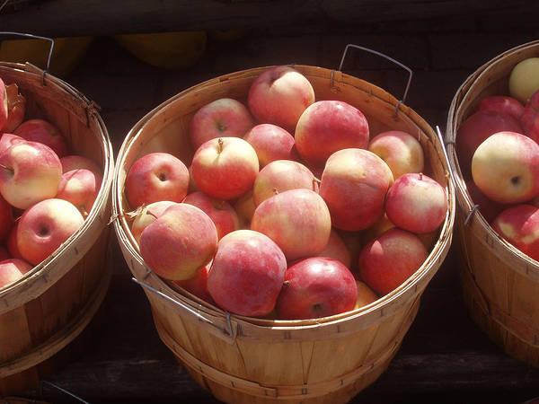 Apples Art Print featuring the photograph Michigan Apples by Wayne Potrafka