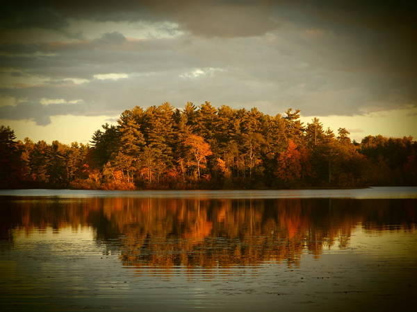 The Mirror Lake.... Northwood Art Print featuring the photograph Mirror Lake Image Of Fall by Traci Barnes