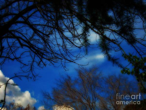 Sky Art Print featuring the photograph Monday Monday by Linda De La Rosa