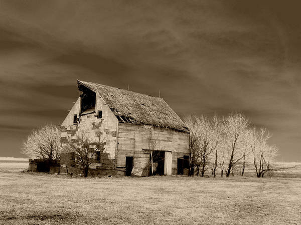 Barn Art Print featuring the photograph Moon Lit Sepia by Julie Hamilton