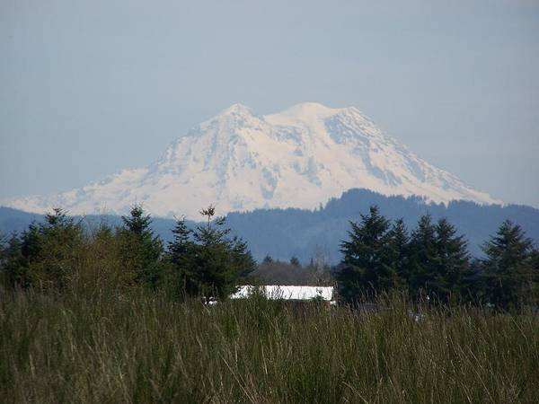 Digital Photography Art Print featuring the photograph Mount Rainier Again by Laurie Kidd
