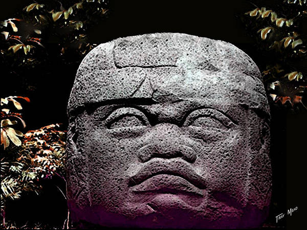 Aztec Art Print featuring the photograph Mr Stone Head by Tray Mead