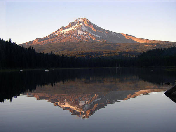 Nature Art Print featuring the photograph Mt Hood by Eric Workman