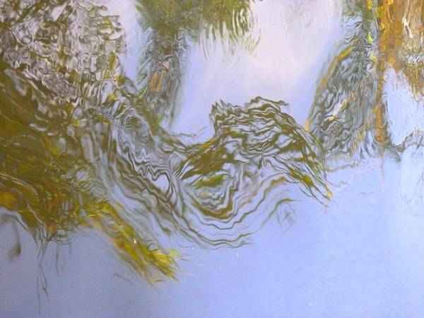 Nature Art Print featuring the photograph Natures Mirror by Florene Welebny