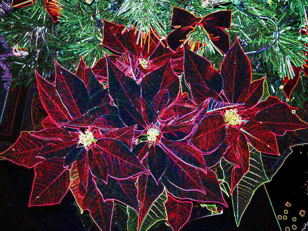 Flowers Art Print featuring the photograph Neon Poinsettias by Nancy Mueller