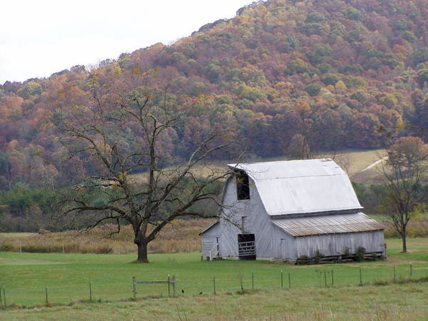 Barn Art Print featuring the photograph North Carolina Whitewash by Jim Greer