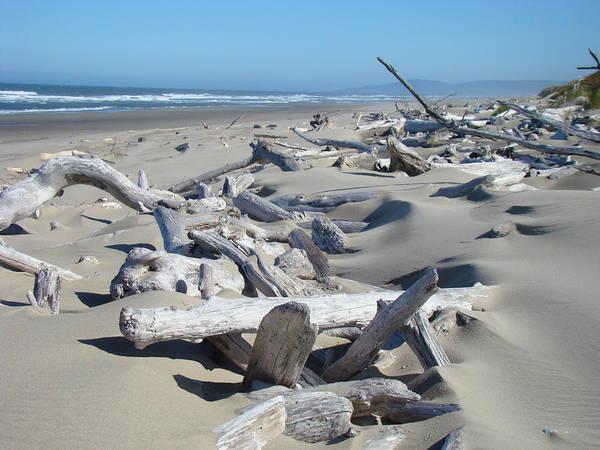 Driftwood Art Print featuring the photograph Ocean Coastal Art Prints Driftwood Beach by Baslee Troutman