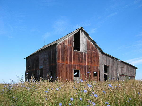 Landscape Art Print featuring the photograph Odell Barn I by Dylan Punke