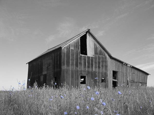 Rural Art Print featuring the photograph Odell Barn IIi by Dylan Punke