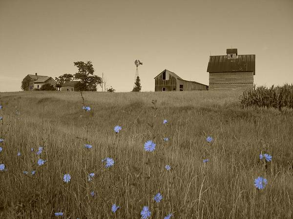 Landscape Art Print featuring the photograph Odell Farm V by Dylan Punke