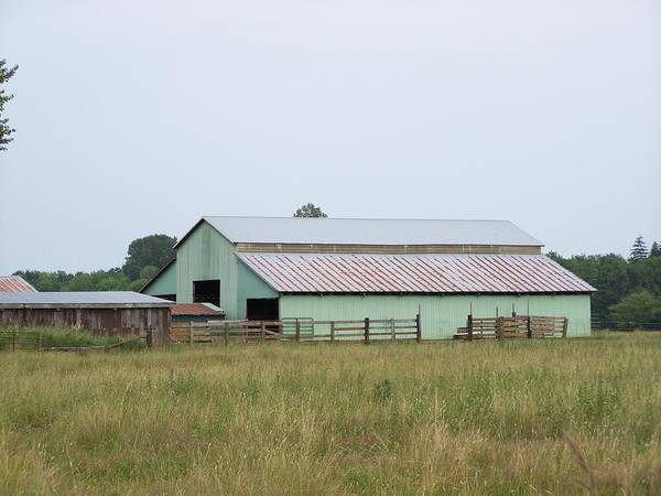 Barn Art Print featuring the photograph Old Green Barn  Washington State by Laurie Kidd