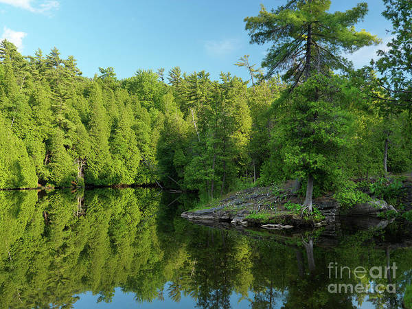 River Art Print featuring the photograph Ontario Nature Scenery by Oleksiy Maksymenko